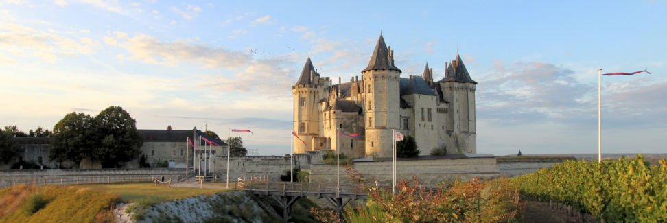 Chateau-de-Saumur_kv_5267