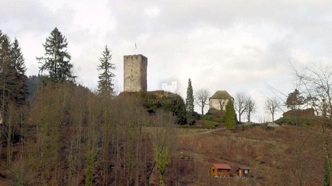 Burg-Hornberg_0121_Frontale