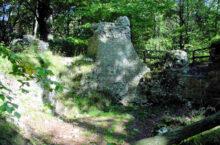 Burg Sachsenstein