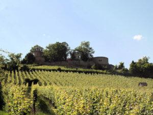 Burg Weibertreu