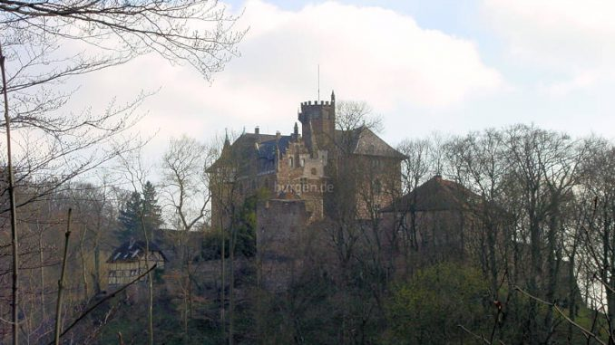 Schloss-Berlepsch_0073_Blick-aus-dem-Wald