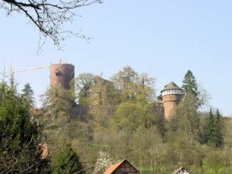 Trendelburg - Panorama mit Turm