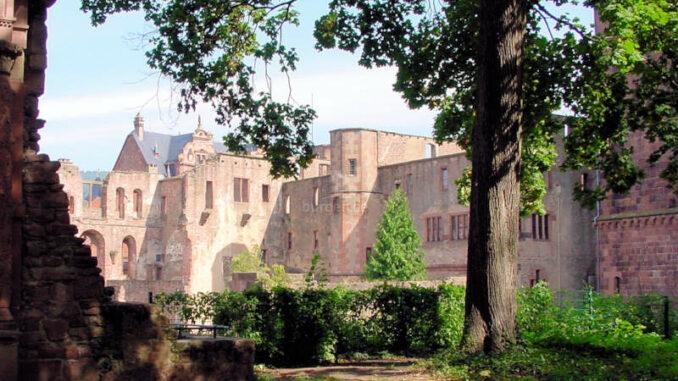 Schloss-Heidelberg_0012_Palas-mit-Baum