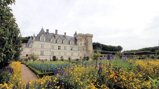 Chateau-de-Villandry_4855_Blumengarten