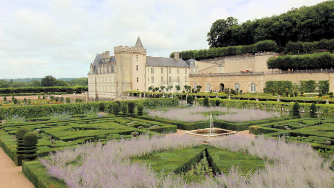 Chateau-de-Villandry_4882_Wintergrass