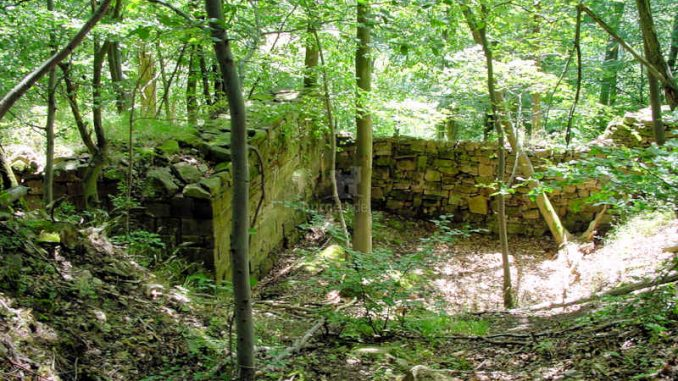 Burg-Hohenfels_Mauerreste_0097
