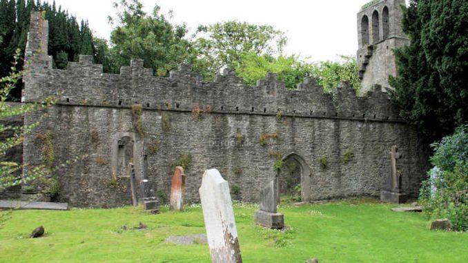 Malahide_Ruine-Kirche_6991