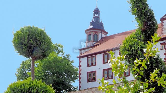 Schloss-Wilhelmstein_Blick-aus-dem-Park