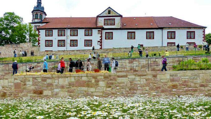 Schloss-Wilhelmstein_Seitenansicht