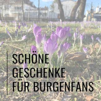 Banner: Geschenktipps für Burgenfans