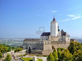 Blick auf die Burg © Foto im Lohnbüro / Burg Forchenstein