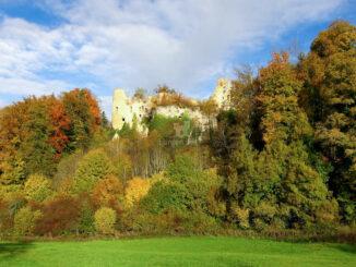 Chateau du Morimont - Blick zur Ruine © Office de Tourisme du Sundgau