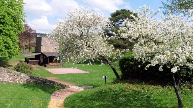 Chateau-des-Ducs-de-Lorraine_Innenhof_c-Chateau