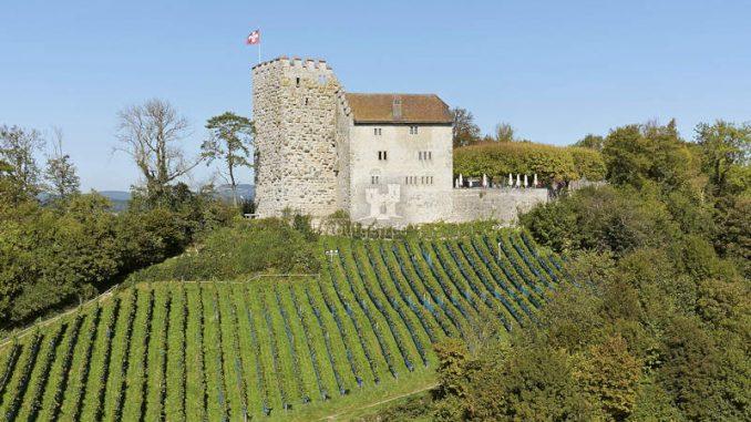 Schloss-Habsburg_Sonnenschein_DSC0469