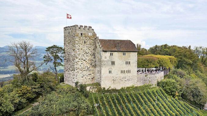 Schloss-Habsburg_mit-Weinberg_DSC0026