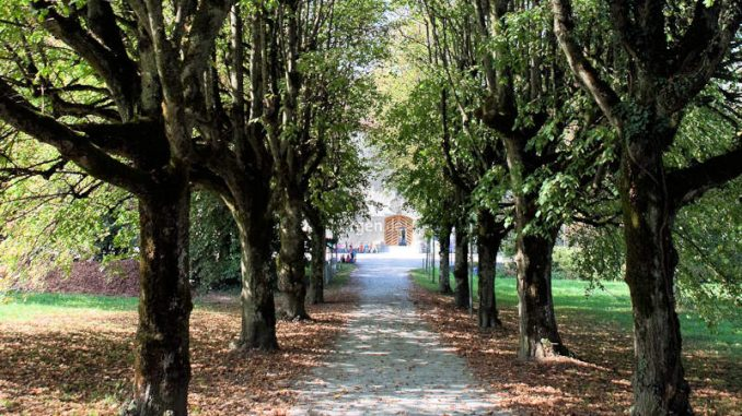 Schloss-Hallwyl_Allee