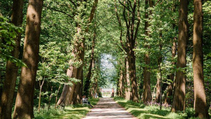 Schloss-Luetetsburg_Schlosspark_c-Friederike-Hegner