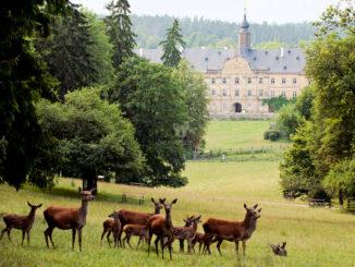 Schlosspark © Wildpark Tambach