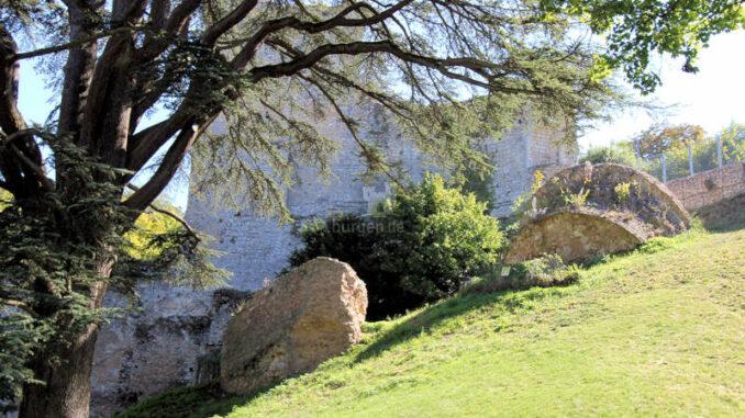 Chateau-de-Vendome_Turmtruemmer