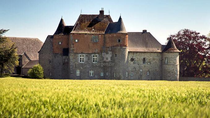 Chateau-du-Fosteau_Kornfeld_c-F-Blaise