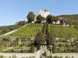 Blick zum Schloss © Schloss Wildegg