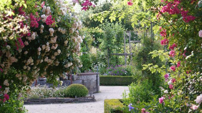 La-Bussiere-Rosengarten_800